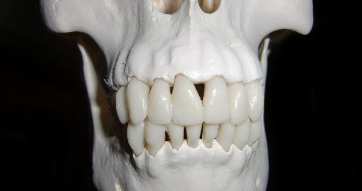 jak-czesto-chodzicie-do-ortodonty-img